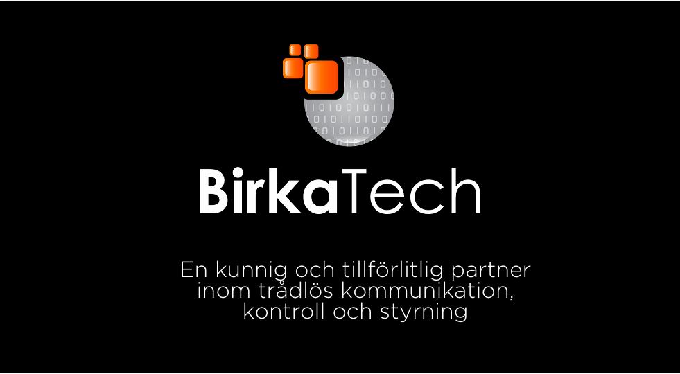 Birka slide 1
